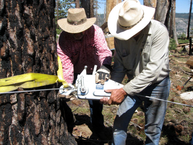 Two men in cowboy hats hooking griphoist to tree